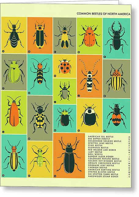 Common Beetles Of North America Greeting Card by Jazzberry Blue