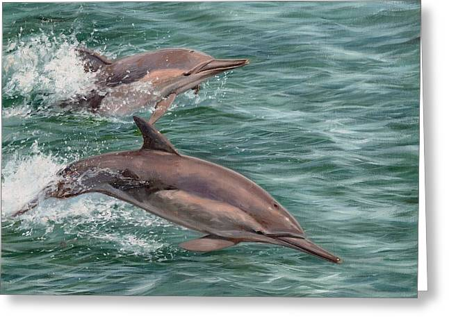 Common Dolphins Greeting Card by David Stribbling