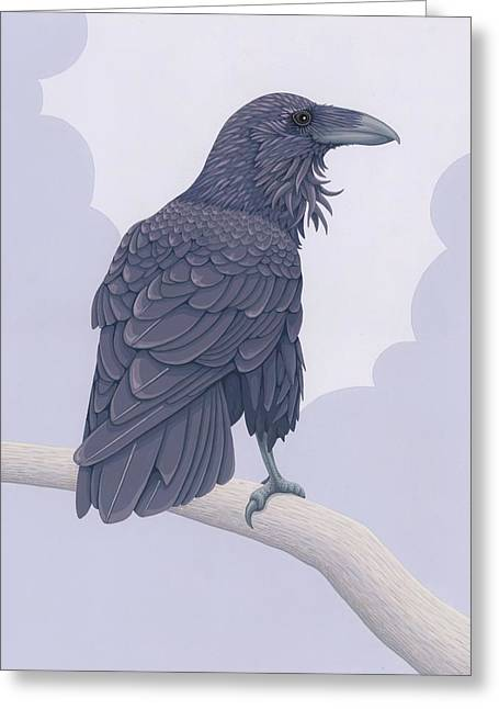 Common Raven Greeting Card by Nathan Marcy