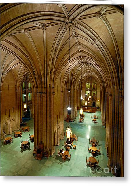 Chandelier Greeting Cards - Commons Room Cathedral of Learning - University of Pittsburgh Greeting Card by Amy Cicconi
