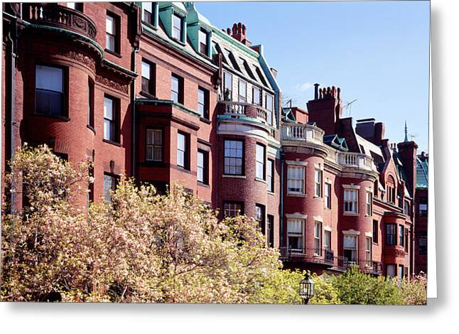 Boston Ma Greeting Cards - Commonwealth Avenue Boston Ma Greeting Card by Panoramic Images