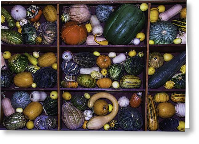 Melon Greeting Cards - Compartments Of Gourds Greeting Card by Garry Gay