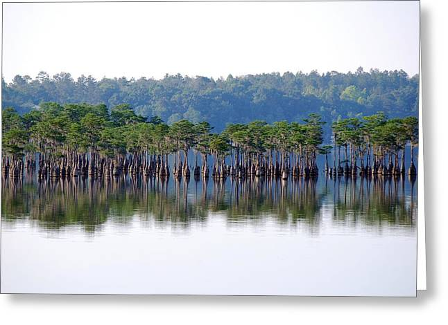 Compass Lake Greeting Card by Peter  McIntosh