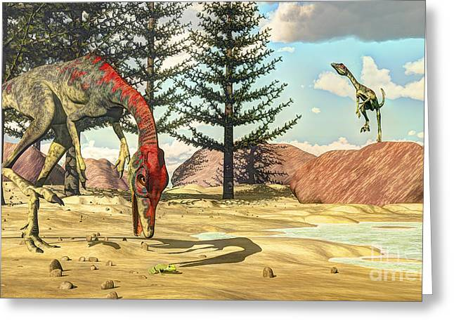 Zoology Greeting Cards - Compsognathus Dinosaur Attempts To Eat Greeting Card by Elena Duvernay