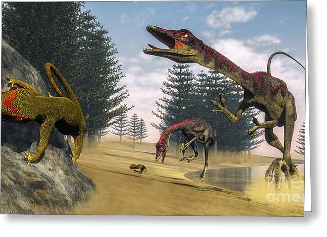 Gecko Illustration Greeting Cards - Compsognathus Dinosaur Hunting A Gecko Greeting Card by Elena Duvernay