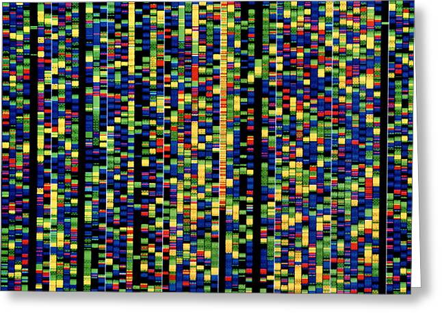 Computer Screen Showing A Human Genetic Sequence Greeting Card by David Parker