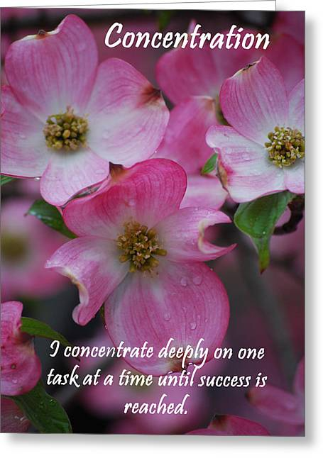 Affirmation Digital Art Greeting Cards - Concentration Greeting Card by Michelle  BarlondSmith