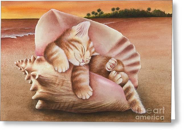 Conch Kitten Greeting Card by Carolyn Steele