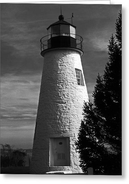 Concord Point Lighthouse Md Greeting Card by Skip Willits
