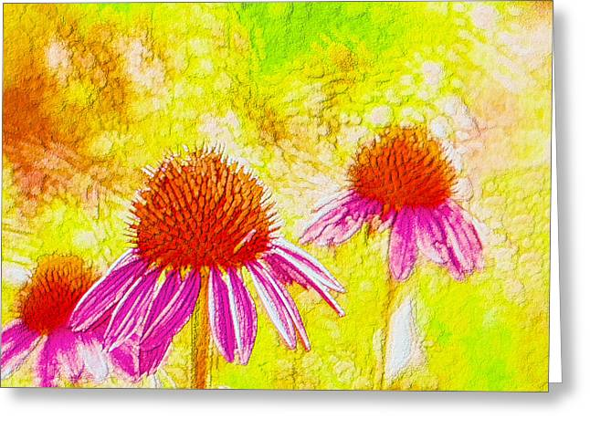 Abstracted Coneflowers Paintings Greeting Cards - Cone Flower  Greeting Card by Lanjee Chee