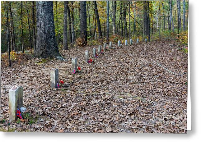 13 Unknown Confederate Soldiers - Natchez Trace Greeting Card by Debra Martz