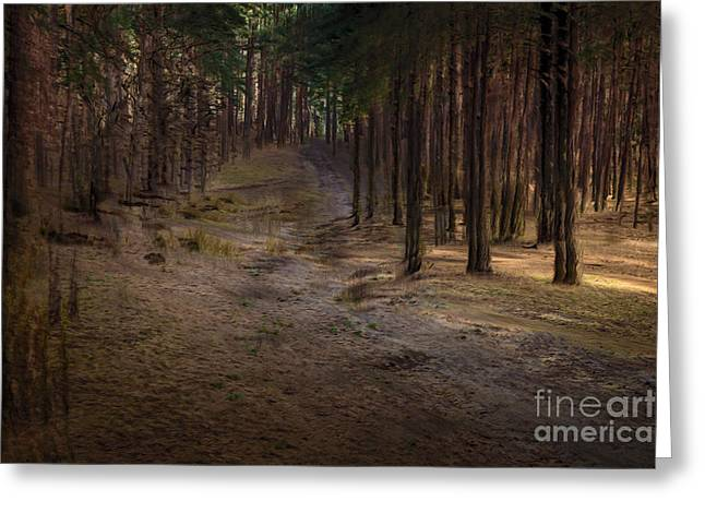Conifer Hill Greeting Card by Richard Thomas