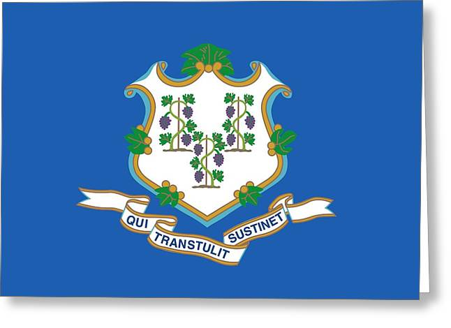 Connecticut State Flag Greeting Card by American School