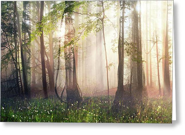 Awakening Greeting Cards - Constancy Greeting Card by Cynthia Decker