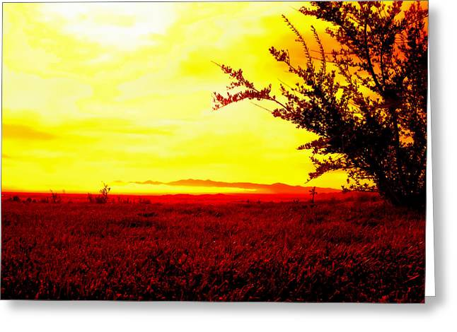 Meditative Art Greeting Cards - Contemplating Blue Greeting Card by Glenn McCarthy Art and Photography