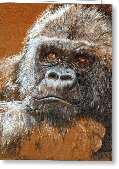 Gorilla Drawings Greeting Cards - Contemplating his Fate Greeting Card by Caroline Evans