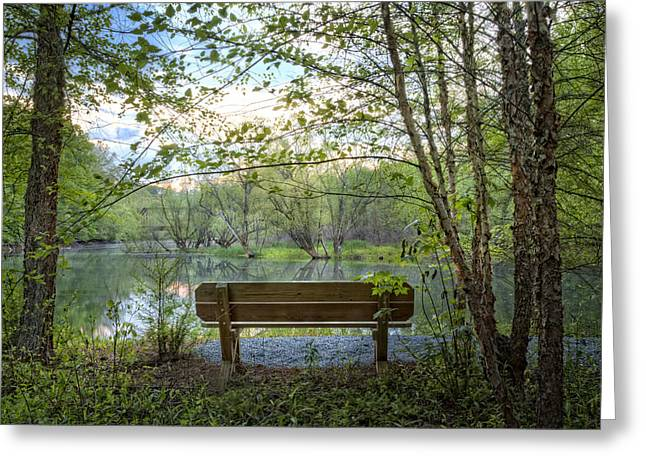 Pond In Park Greeting Cards - Contemplation Greeting Card by Debra and Dave Vanderlaan