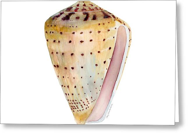 Background Paintings Greeting Cards - Conus Leopardus Shell Greeting Card by Amy Kirkpatrick