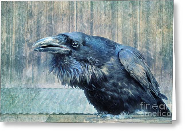 Corvus Greeting Cards - Conversation  Greeting Card by Priska Wettstein