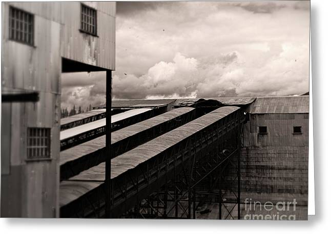Storage Building Greeting Cards - Conveyor of History Greeting Card by Royce Howland