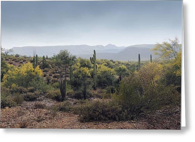 Cool Arizona Morning Greeting Card by Gordon Beck
