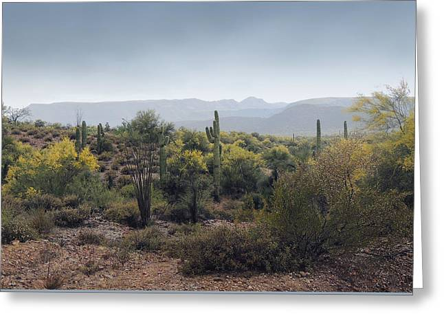 Cave Creek Western Greeting Cards - Cool Arizona Morning Greeting Card by Gordon Beck
