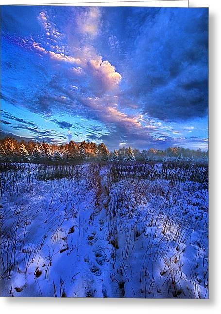Cool Blue North Greeting Card by Phil Koch