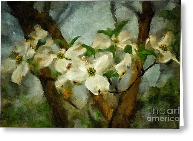 Dogwood Blossom Greeting Cards - Cool Breeze Painterly Greeting Card by Lois Bryan