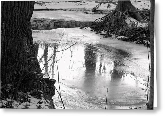 Indiana Winters Digital Art Greeting Cards - Cool Pool Greeting Card by Ed Smith