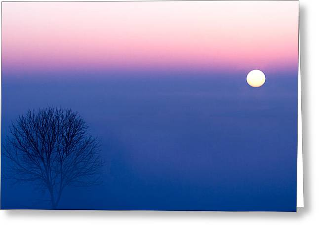 Cool Winter Sun Greeting Card by Todd Klassy