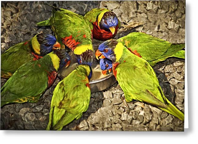 Feeding Birds Greeting Cards - Cooler Talk Greeting Card by Carolyn Marshall