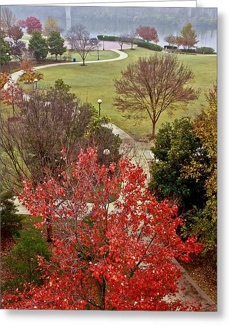 Riverpark Greeting Cards - Coolidge Park Path Greeting Card by Tom and Pat Cory