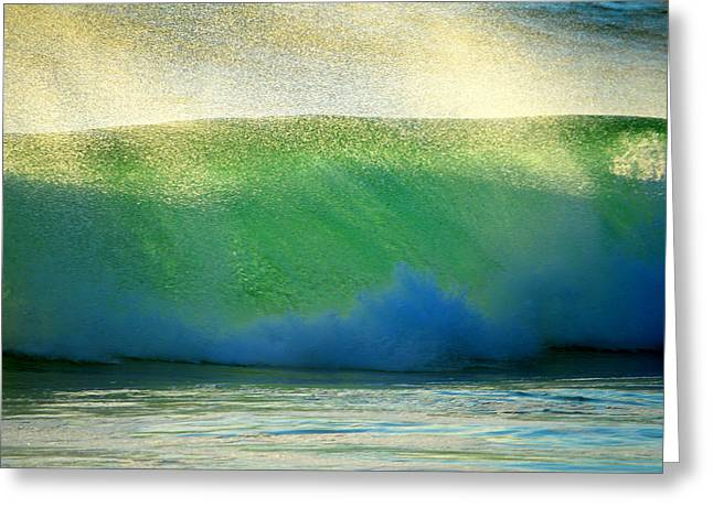 Aquatic Greeting Cards - Cooling Sea Spray Greeting Card by Dianne Cowen