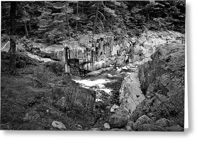 Coos Canyon 1553 Greeting Card by Guy Whiteley