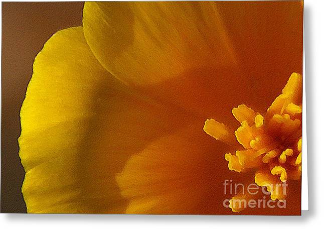 California Orange Poppy. Yellow Poppy Greeting Cards - Copa de Oro - subdued  Greeting Card by Linda Knorr Shafer