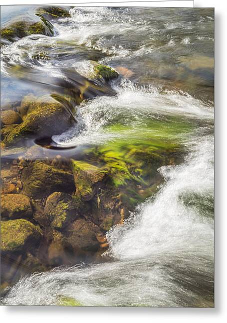 Water Flowing Greeting Cards - Coquet Water Greeting Card by David Taylor