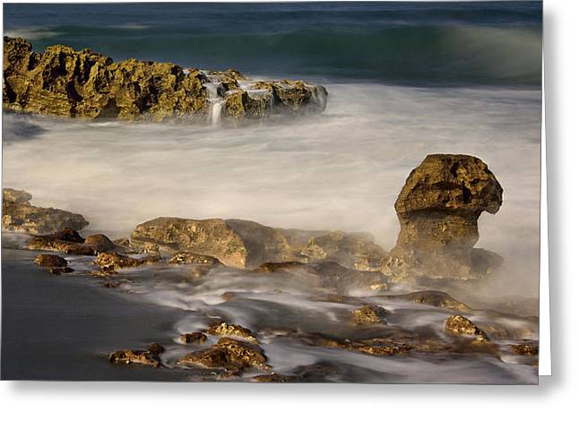 Ethereal Beach Scene Greeting Cards - Coral Cove Beach Greeting Card by Carol Eade
