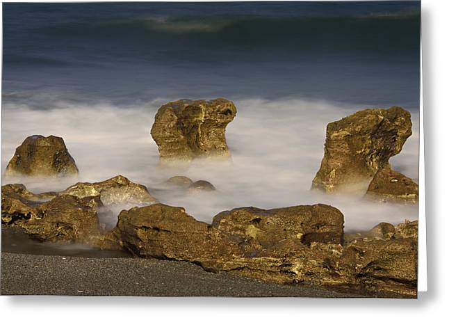 Ethereal Beach Scene Greeting Cards - Coral Cove Beach No. 2 Greeting Card by Carol Eade