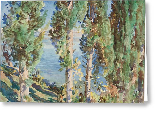 Italian Landscape Greeting Cards - Corfu Cypresses Greeting Card by John Singer Sargent