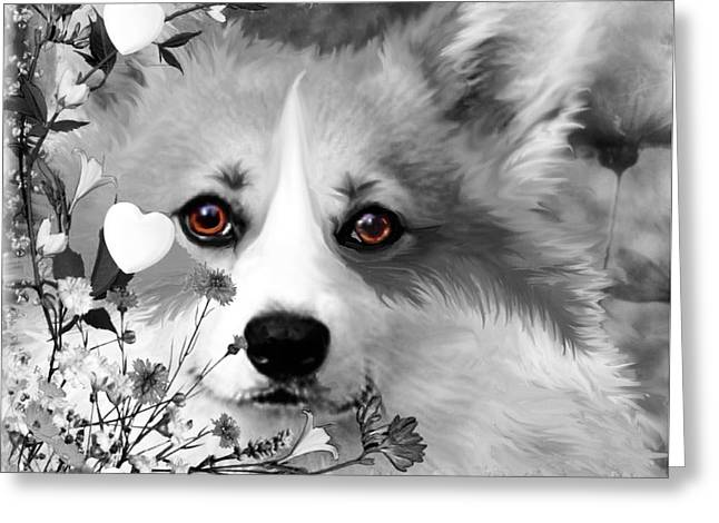 Dogs Digital Greeting Cards - Corgi in the Flowers with a Splash of Color Greeting Card by Kathy Kelly