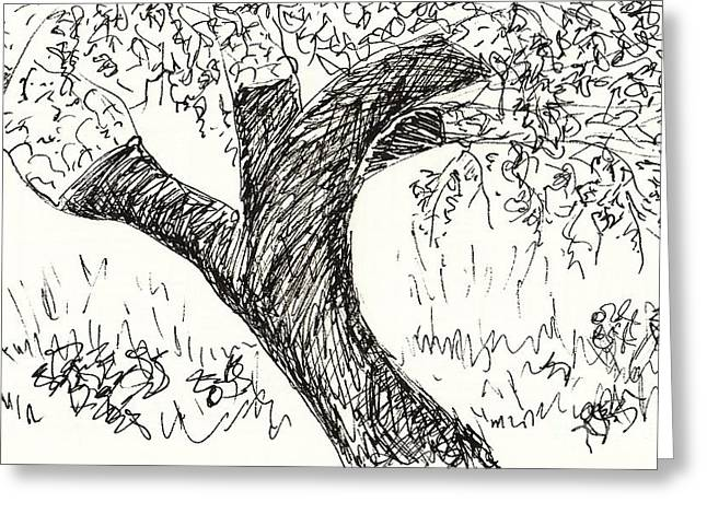 Black Lodge Drawings Greeting Cards - Cork Oak Greeting Card by Chani Demuijlder