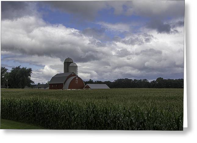 Outbuildings Greeting Cards - Corn Crop Beneath Summer Skies Greeting Card by Gerald DeBoer