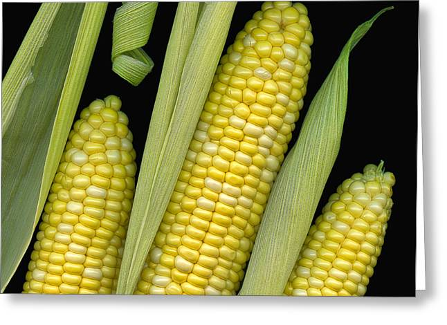 Corn Kernel Greeting Cards - Corn on the Cob I  Greeting Card by Tom Mc Nemar