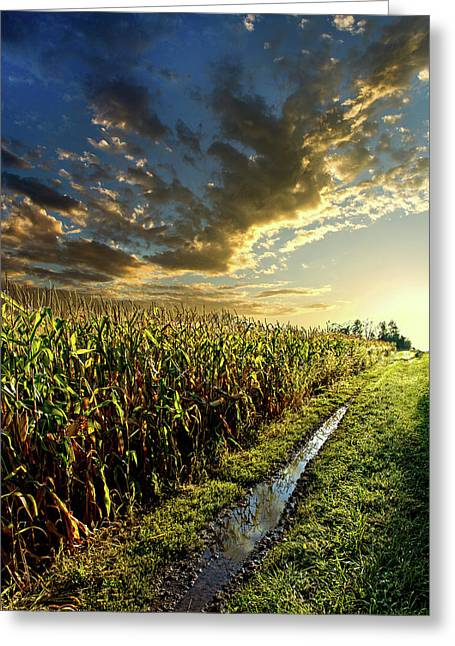 Corn Greeting Cards - Corn Road Greeting Card by Phil Koch