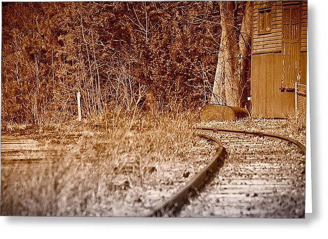 Old Tress Greeting Cards - Corner Rails Greeting Card by Ross Powell
