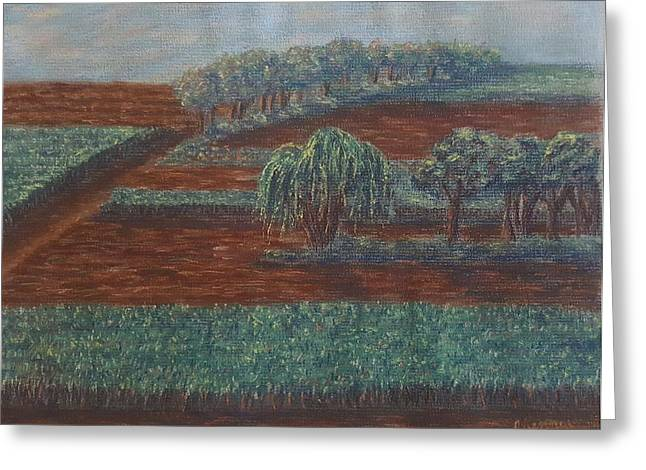 Cornfield Pastels Greeting Cards - Cornfields Greeting Card by Joann Renner