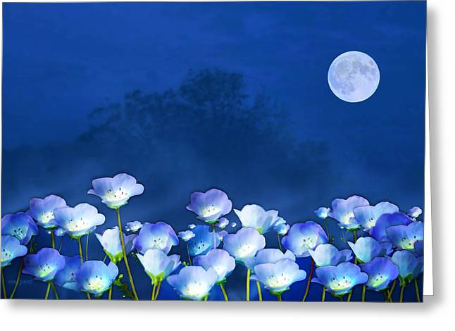 Valzart Greeting Cards - Cornflowers in the moonlight Greeting Card by Valerie Anne Kelly