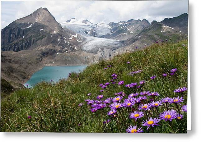 Corno Gries, Switzerland Greeting Card by Vito Guarino