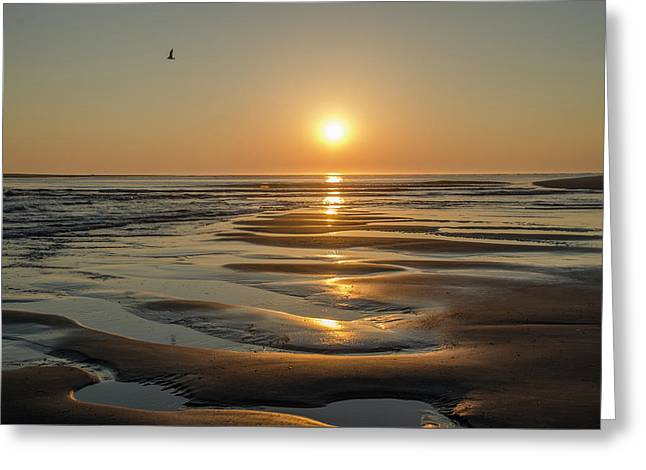Corson's Inlet At Sunrise In Strathmere New Jersey Greeting Card by Bill Cannon