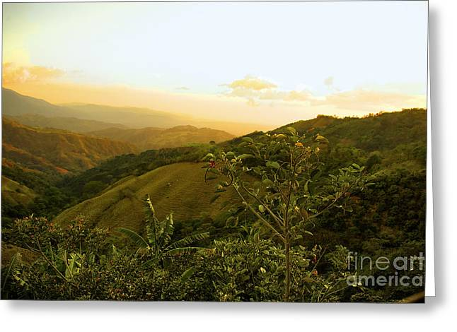 Costa Photographs Greeting Cards - Costa Rica Rolling Hills 2 Greeting Card by Madeline Ellis
